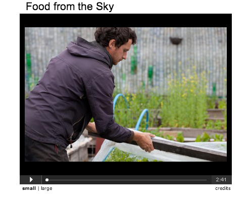 Food from the Sky screenshot